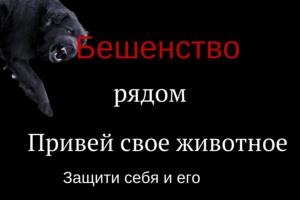 Ветеринарные правила осуществления профилактических, диагностических, ограничительных и иных мероприятий, установления и отмены карантина и иных ограничений, направленных на предотвращение распространения и ликвидацию очагов бешенства